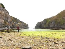 Бонни Шотландия стоковая фотография rf
