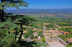 Bonnieux. And cedar tree in Provence Royalty Free Stock Photo