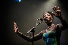 Bonobo de concert à la métropole, Montréal image stock