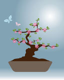 Bonsai 2 - vector design. Illustration of a background with a  blossom bonsai and butterflies.EPS file available Stock Photo