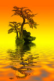 Bonsai. Little tree in water with reflex and orange background Royalty Free Stock Image
