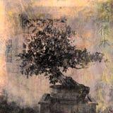 bonsai vektor illustrationer