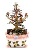 Bonsai-Baum Lizenzfreie Stockfotografie