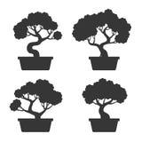 Bonsai-Baum-Schattenbild-Satz Stockfotos