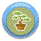Bonsai in de pot Stock Foto's