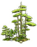 Bonsai Forest. A tiny bonsai forest illustration Royalty Free Stock Photography