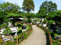 Bonsai Garden Stock Photo