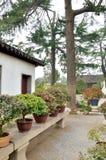 Bonsai Garden in Humble Administrator's Garden Stock Photo
