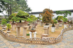 Bonsai Garden in Humble Administrator's Garden Stock Image