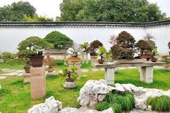 Bonsai Garden in Humble Administrator's Garden Stock Images