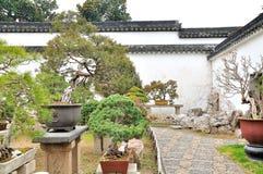 Bonsai Garden in Humble Administrator's Garden Stock Photography