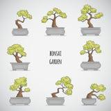 Bonsai-Garten Lizenzfreie Stockfotografie