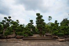 Bonsai-Garten Lizenzfreie Stockfotos