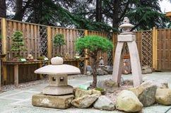 Bonsai. In the Japanese garden Royalty Free Stock Photos
