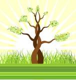 bonsai krajobrazu Obraz Royalty Free