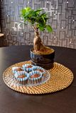 Bonsai and muffin on dining table stock photography