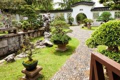 Bonsai ogród w Singapur Obrazy Stock