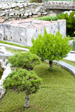 Bonsai in Park Italy in miniature Royalty Free Stock Images