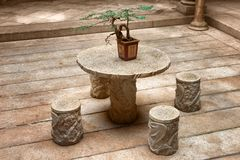Bonsai plant on table. Bonsai plant on a stone outdoor table Stock Images