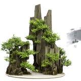 bonsai porcelana Zdjęcie Royalty Free