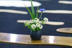 Bonsai pot Stock Image
