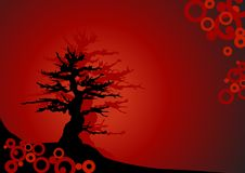 Bonsai on red background - Vector. Vector Bonsai on red background with circles Royalty Free Illustration