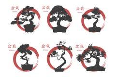 Bonsai set. Black silhouette of a bonsai on a white background. Royalty Free Stock Photography