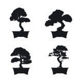 Bonsai set. Black silhouette of bonsai on white background. Royalty Free Stock Photos