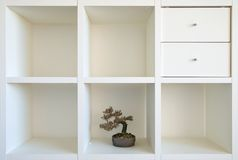 Bonsai shelf II stock image