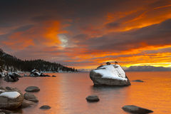 Bonsai Sunset Tahoe Stock Images
