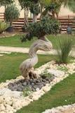Bonsai Tree. Royalty Free Stock Photos