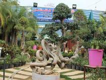 Bonsai Tree. Royalty Free Stock Images