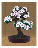 Bonsai tree with flowers. Bonsai tree with beautiful flowers on traditional japanese background Royalty Free Stock Image