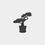 Bonsai Tree Icon in a flat design in black color. Vector illustration eps10 Stock Photo