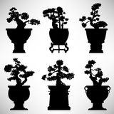 Bonsai Tree Plant Flower Pot. A set of bonsai tree in silhouette vector Stock Image