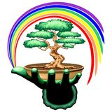 Bonsai Tree and Rainbow on Green Hand Stock Photo