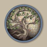 Bonsai tree in round frame Stock Images
