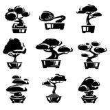 Bonsai tree set. Vector. Illustration Royalty Free Stock Photo