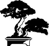 Bonsai Tree silhouette Royalty Free Stock Photography