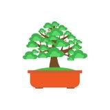 Bonsai Tree on white background ,Vector Royalty Free Stock Photo