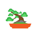 Bonsai Tree on white background ,Vector Royalty Free Stock Images