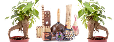 Bonsai trees and african musical instruments Stock Images