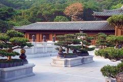 Bonsai trees in the Chi Lin Nunnery garden. Diamond Hill, Hong Kong royalty free stock photos