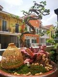 Bonsai and Tuscany house royalty free stock photos