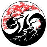 Bonsai Yin Yang Arkivfoto