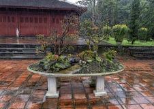 Bonsaiboom in de Pagode van Thien Mu in Tint, Vietnam stock fotografie