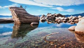 Bonsairots in meer tahoe Stock Fotografie