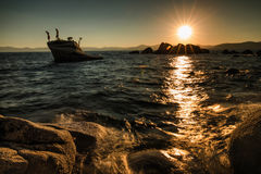 Bonsairots, Meer Tahoe stock afbeelding