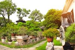 Bonsais in bescheidenem Verwalter ` s arbeiten, Suzhou, China im Garten lizenzfreie stockfotos