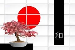 Bonsais del arce japonés Fotos de archivo libres de regalías